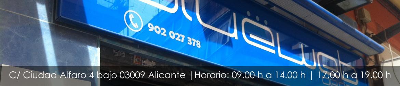 Empresa de páginas web en Alicante Bluewebdesign.
