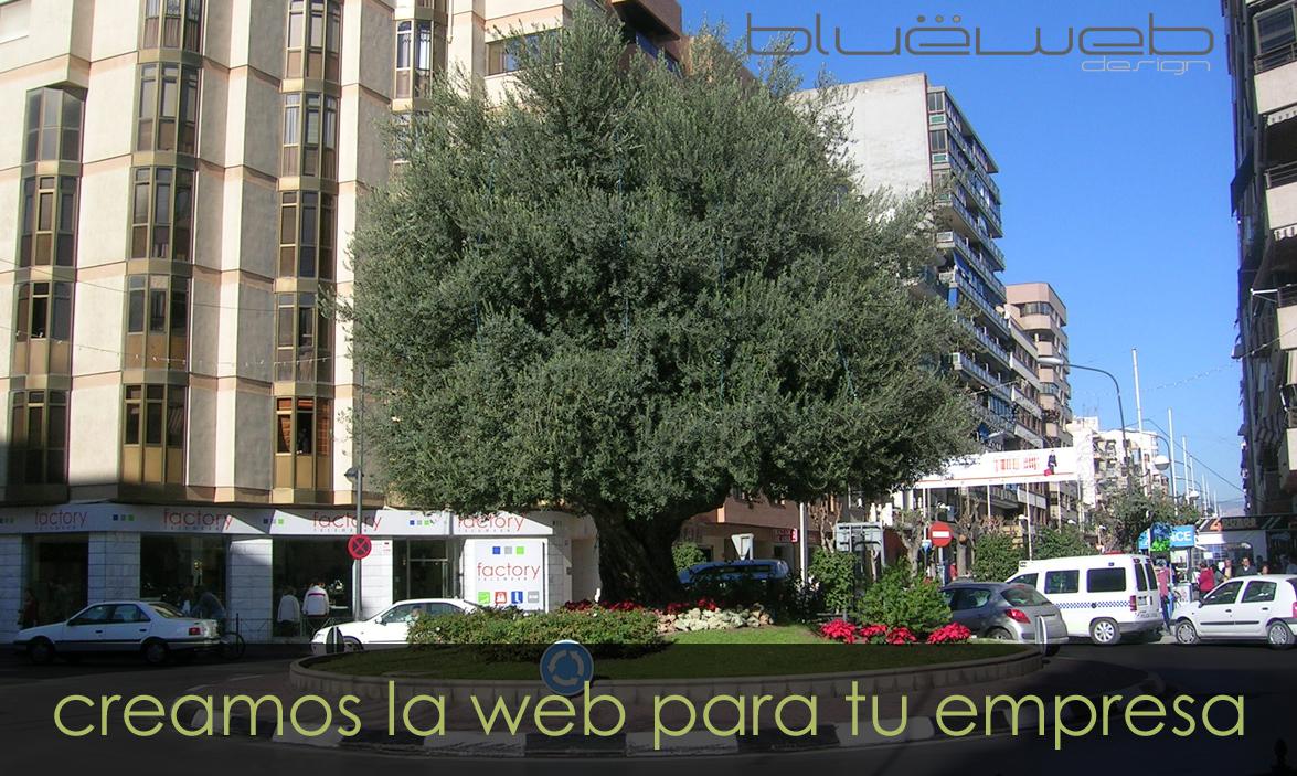 Empresas de páginas web en San Juan de Alicante.